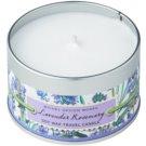 Michel Design Works Lavender Rosemary lumanari parfumate  113 g în placă