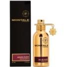 Montale Aoud Ever parfémovaná voda unisex 50 ml