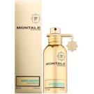 Montale Aoud Lagoon parfumska voda uniseks 50 ml