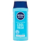 Nivea Men Cool sampon pentru par normal spre gras (Cool Fresh) 250 ml