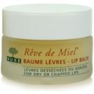 Nuxe Reve de Miel výživný balzám na rty (Ultra-Nourishing Lip Balm) 15 g