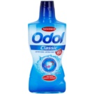 Odol Classic Mouthwash Against Dental Caries (Alcohol-Free) 500 ml