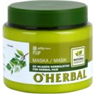 O'Herbal Betula Alba masca pentru par normal (Healthy-Looking Hair) 500 ml