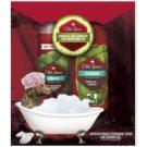 Old Spice Citron lote de regalo II. desodorante en spray 125 ml + gel de ducha 250 ml