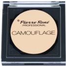 Pierre René Face corrector en crema con efecto de larga duración tono 00 (Camouflage) 3,5 g