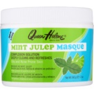 Queen Helene Mint Julep Mask For Oily Acne - Prone Skin (Oily and Acne Prone Skin) 340 g
