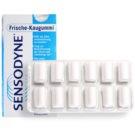 Sensodyne Dental Care žvýkačky bez cukru (Bubblegum) 12 Ks