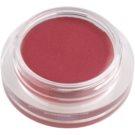 Shiseido Eyes Shimmering Cream Creamy Eyeshadow Color RS 318 6 g