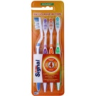 Signal Anti-Plaque Action Soft Toothbrushes, 4 pcs Blue & Violet & Orange & Green