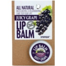 Sportique Wellness Juicy Grape balsam de buze (All Natural) 20 ml