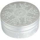 STEAMCREAM Silver Crystal creme intensivo hidratante 75 ml