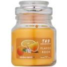 THD Candela Profumeta Arancia e Mandarino ароматизована свічка  140 гр