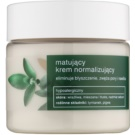 Tołpa Green Matt Normalising Mattifying Cream For Oily Skin Thyme, Quince (Hypoallergenic) 50 ml