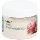 Tołpa Green Modeling 60+ ремоделиращ дневен крем против бръчки Wild Rose, Buckbean, Shea Butter (Rejuvenates Facial, Featuresfills Wrinkles, Lightens Discoloration) 50 мл.