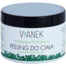Vianek Energizing Detox-Bodypeeling mit glättender Wirkung mit Mariendistelsamen  150 ml