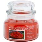 Village Candle Juicy Raspberry vonná svíčka 269 g malá