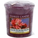 Yankee Candle Black Plum Blossom votivní svíčka 49 g