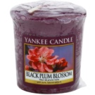 Yankee Candle Black Plum Blossom Votive Candle 49 g