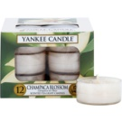 Yankee Candle Champaca Blossom vela do chá 12 x 9,8 g