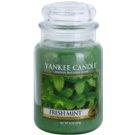 Yankee Candle Fresh Mint vela perfumada  623 g Classic grande