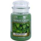 Yankee Candle Fresh Mint vonná svíčka 623 g Classic velká