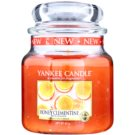 Yankee Candle Honey Clementine Scented Candle 411 g Classic Medium