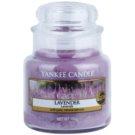 Yankee Candle Lavender ароматизована свічка  104 гр Classic  маленька