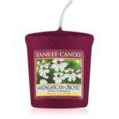 Yankee Candle Madagascan Orchid velas votivas 49 g