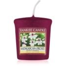 Yankee Candle Madagascan Orchid vela votiva 49 g