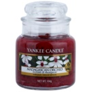 Yankee Candle Madagascan Orchid ароматизована свічка  104 гр Classic  маленька