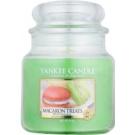 Yankee Candle Macaron Treats vela perfumado 411 g Classic médio