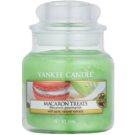 Yankee Candle Macaron Treats vela perfumado 104 g Classic pequeno