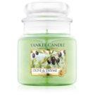 Yankee Candle Olive & Thyme vonná svíčka 411 g Classic střední