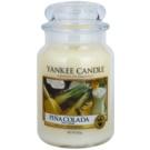 Yankee Candle Pinacolada vela perfumada  623 g Classic grande