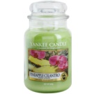 Yankee Candle Pineapple Cilantro Duftkerze  623 g Classic groß