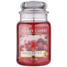 Yankee Candle Cranberry Ice vela perfumada  623 g Classic grande