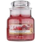Yankee Candle Cranberry Ice vela perfumada  104 g Classic pequeña