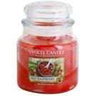 Yankee Candle Red Raspberry świeczka zapachowa  411 g Classic średnia
