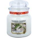 Yankee Candle Sea Salt & Sage Duftkerze  411 g Classic medium