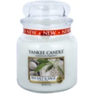 Yankee Candle Sea Salt & Sage Scented Candle 411 g Classic Medium