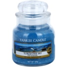 Yankee Candle Turquoise Sky ароматизована свічка  104 гр Classic  маленька
