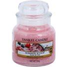 Yankee Candle Summer Scoop Duftkerze  104 g Classic mini
