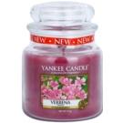 Yankee Candle Verbena illatos gyertya  411 g Classic közepes méret