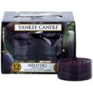 Yankee Candle Wild Fig čajová svíčka 12 x 9,8 g