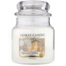 Yankee Candle Winter Glow ароматизована свічка  411 гр Classic  середня