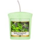 Yankee Candle Wild Mint vela votiva 49 g