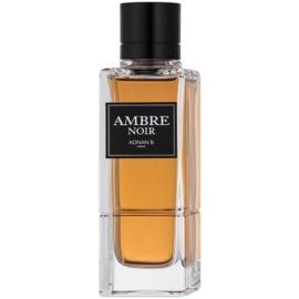 Adnan B. Ambre Noir Eau de Toilette für Herren 100 ml