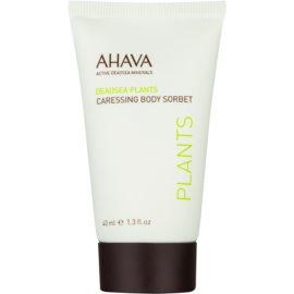 Ahava Dead Sea Plants sanftes Body-Sorbet  40 ml