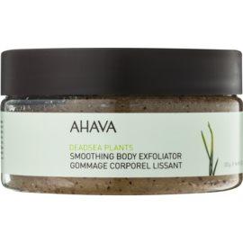 Ahava Dead Sea Plants vyhladzujúci telový peeling  300 g