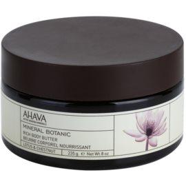 Ahava Mineral Botanic Lotus & Chestnut vyživující tělové máslo lotos a kaštan  235 g